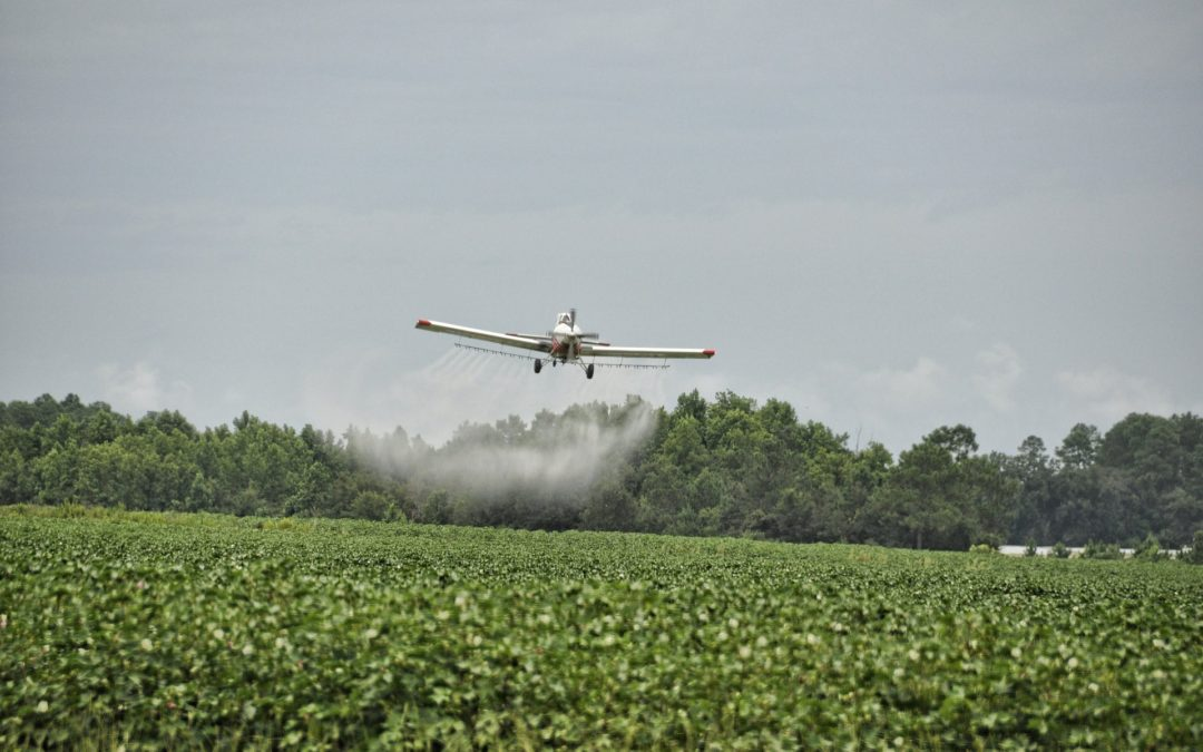 Stoa TP Backgrounder #2: Herbicides