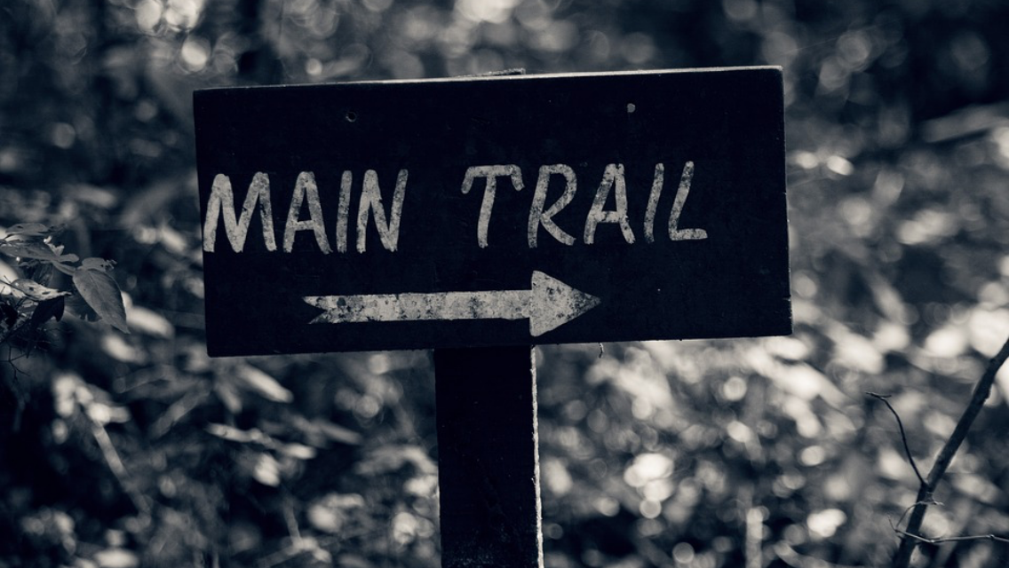 Visualizing the customer experience using customer experience journey maps