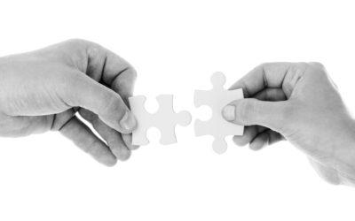 Partnership Primer